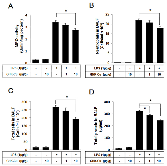 GHK-Cu reduced immune cell infiltration and total protein in BALF.
