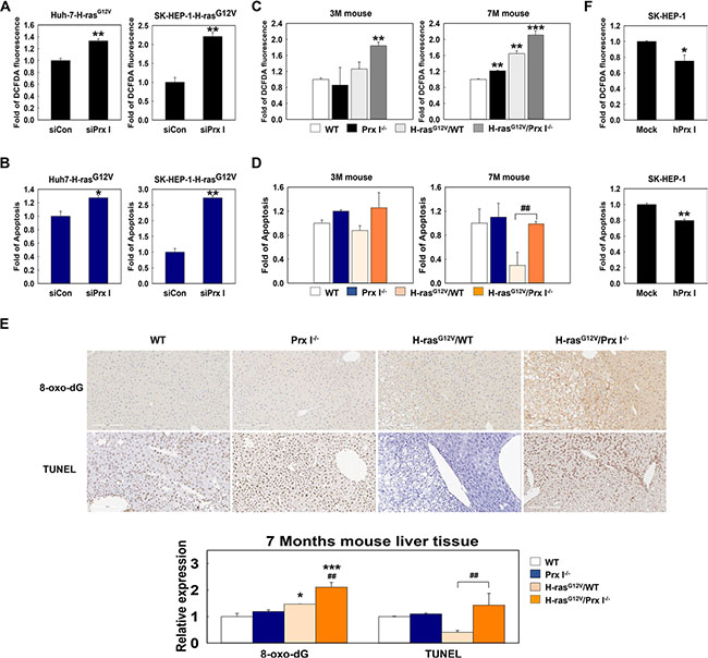 Prx I inhibited ROS induced tumor cell death.