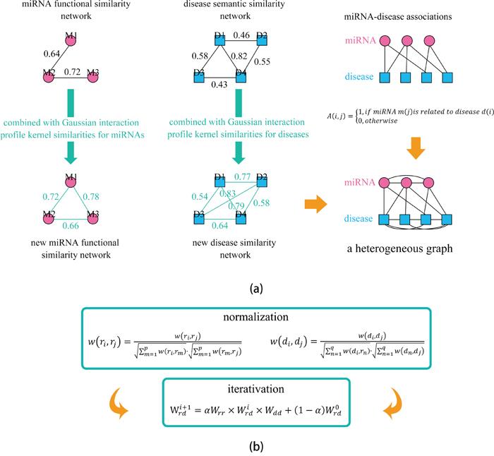 Flowchart of potential disease-miRNA association prediction based on the computational model of HGIMDA.