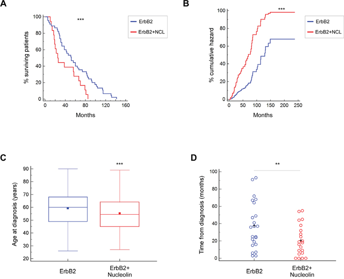 Overexpression of nucleolin in ErbB2-positive breast cancer patients is associated with earlier onset and poor prognosis.
