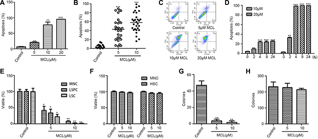 MCL selectively induces the apoptosis of AML leukemic stem cells, but not normal hematopoietic stem cells.