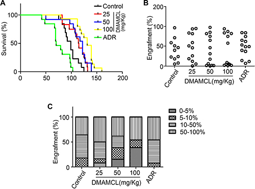 MCL improves the survival of mice with human AML.