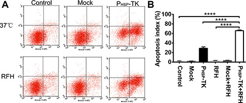 Representative results of the cell apoptosis assay with Annexin V-APC and PI double staining.