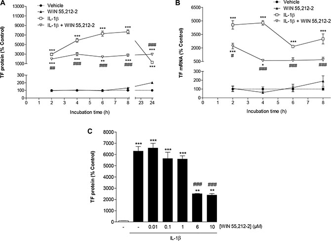 Impact of WIN 55,212-2 on TF expression in HUVEC.