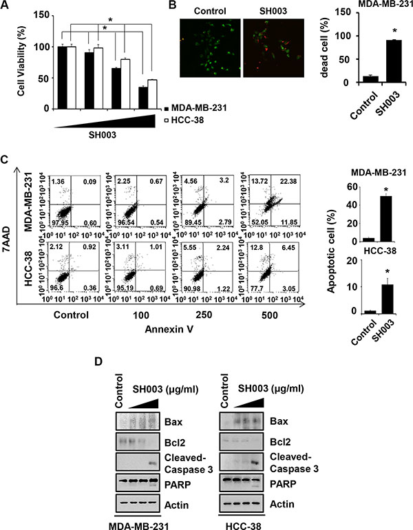 SH003 induces apoptotic cell death.