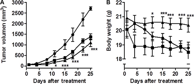 CM363 inhibits growth of human CML xenografts in vivo.