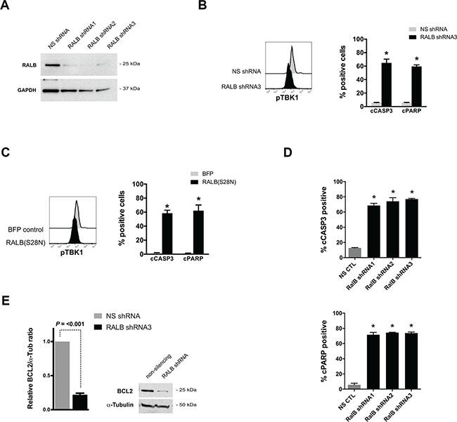 Genetic disruption of RALB-TBK1 signaling induces apoptosis in leukemia cells.