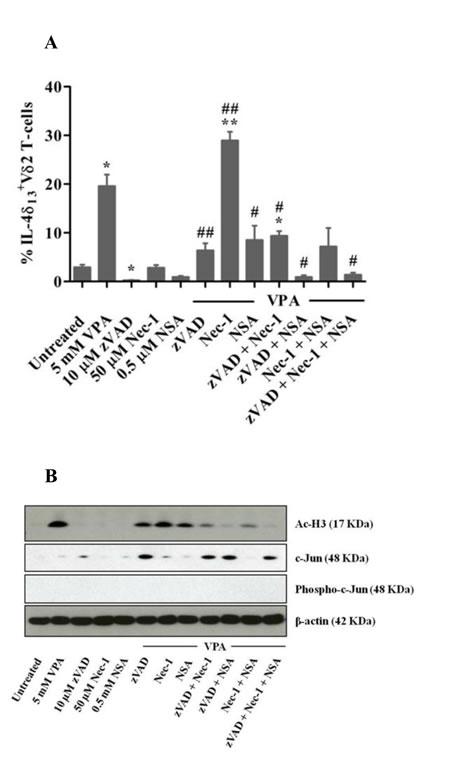 Modulation of IL-4δ