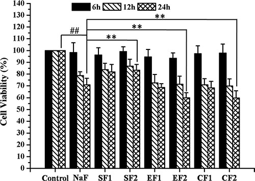 Effects of SIRT1 on cell viability of MC3T3-E1 exposed to NaF.