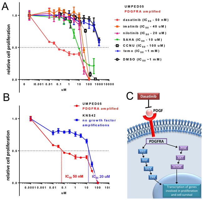 Treatment of UMPED05 with multiple chemotherapeutic agents reveals unique sensitivity to dasatinib.