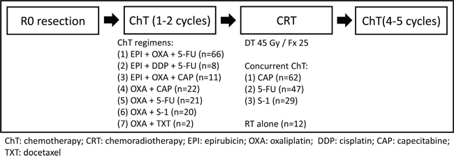 Flowchart of the treatment and the chemotherapy regimens.