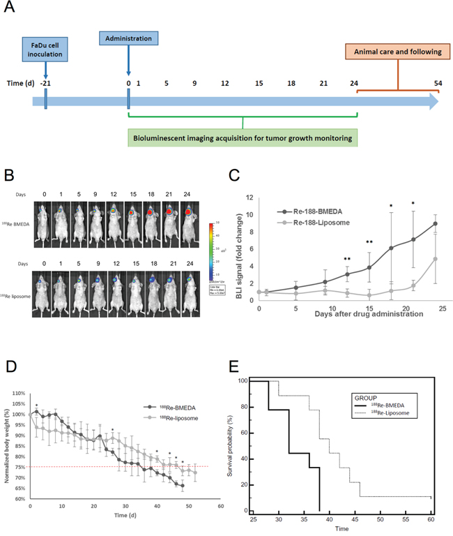 Evaluation of therapeutic efficacy of PEGylated 188Re-liposome on HNSCC xenograft tumor model.