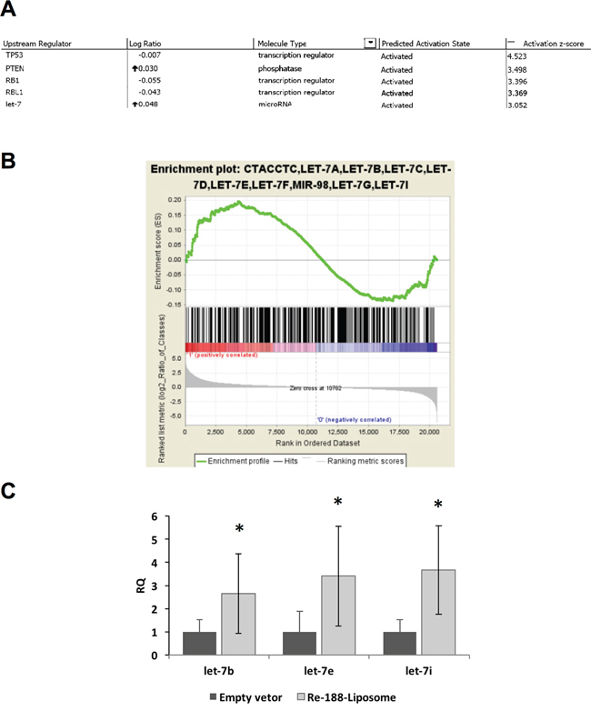 MicroRNA microarray analysis after the HNSCC tumor bearing mouse was treated with PEGylated 188Re-liposome.
