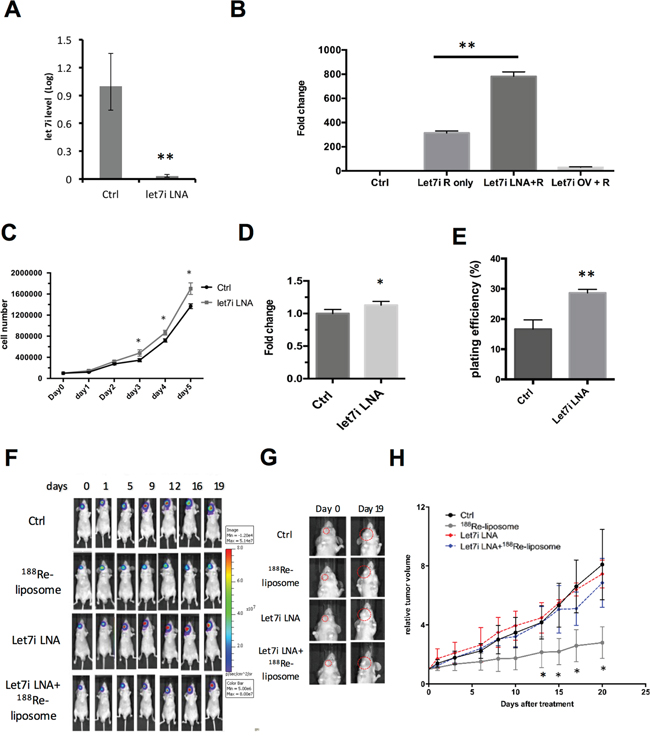 Knockdown of let-7i by LNA™ compromises the effects of 188Re-liposome on suppressing the growth of human HNSCC tumors in vivo.