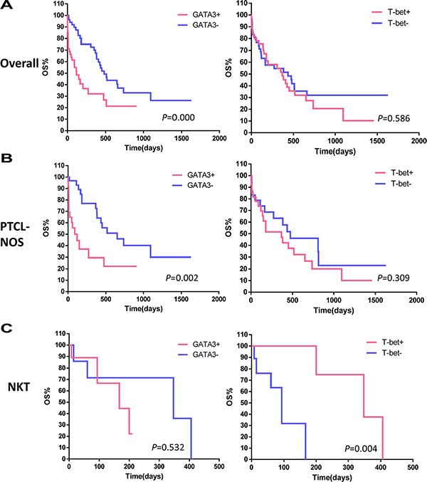 Kaplan-Meier survival analysis of PTCL subgroups based on T-bet and GATA3 expression.