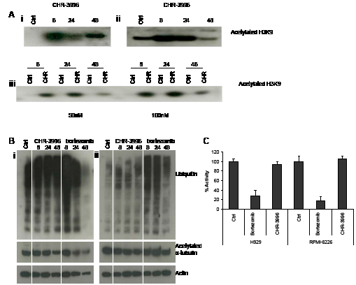 CHR-3996 treatment increases levels of acetylated histone H3K9 but does not affect levels of ubiquitinated proteins, acetylated alpha-tubulin, or inhibit proteasome function.