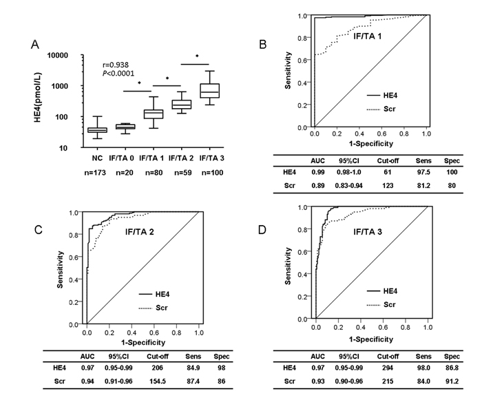 Serum HE4 level is a potential biomarker of renal fibrosis.