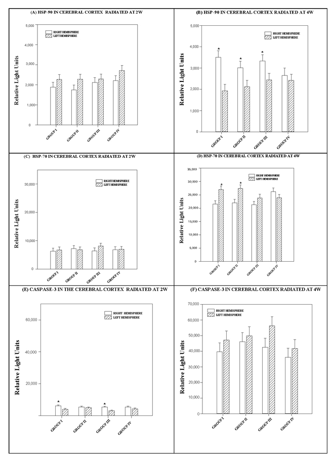 Histograms depicting the means and standard deviations of the chemiluminescence values for (A, B) HSP 90, (C, D) HSP 70 and (E, F) caspase-3 in rats radiated at 2W or 4W, in the right and left hemispheres of the cerebral cortex for each group: GI (900 MHz), GII (2.45 GHz), GIII (0.9+2.45 GHz) and GIV (control).