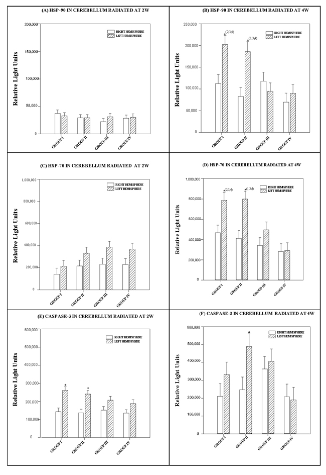 Histograms depicting the means and standard deviations of the chemiluminescence values for (A, B) HSP-90 (C, D) HSP-70 (E, F) caspase-3 in rats radiated at 2W or 4W, in the right and left hemispheres of the cerebellum for each group: GI (900 MHz), GII (2.45 GHz), GIII (0.9+2.45 GHz) and GIV (control).