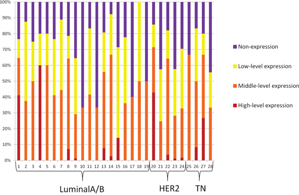 The variation tendency from high-level expression to non-expression of HR of all CTCs for each of the 28 included patients.