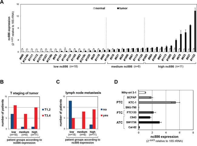 nc886 expression in tissue samples from thyroid cancer patients and cell lines.