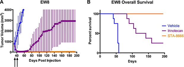 ES tumor volumes and Kaplan-Meier curves for mice treated with vehicle, protracted-dose irinotecan, or STA-8666.