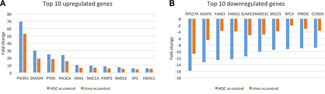 Fold-change comparison of gene expression in tumors five days after a single treatment with STA-8666 or irinotecan.