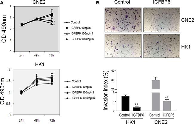Recombinant human IGFBP6 decreases CNE2 cell proliferation and invasion.