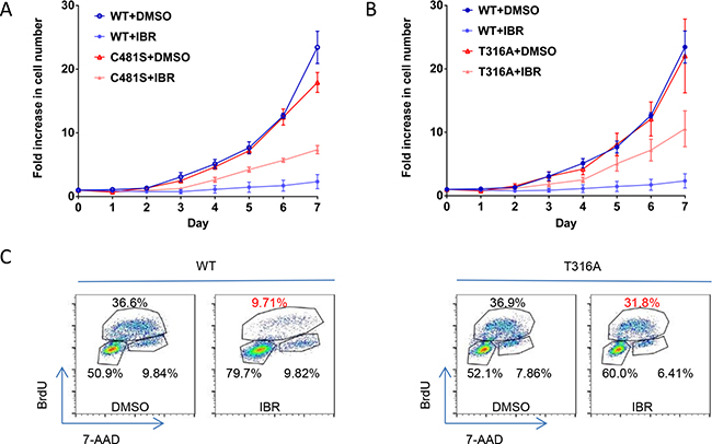 T316A mutation functionally confers ibr resistance at the cellular level.