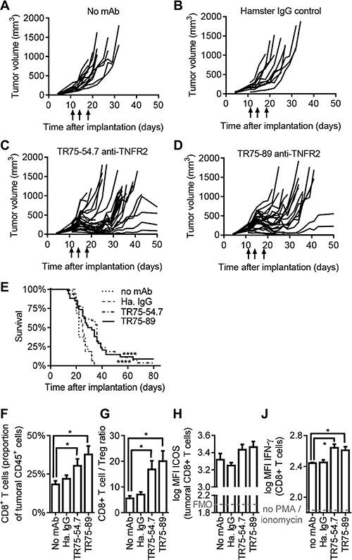 Anti-TNFR2 mAbs inhibit tumor growth in mice.