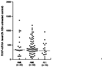 RINF expression by primary human acute leukemia cells.