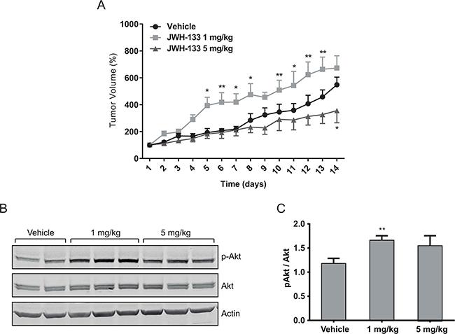 In vivo effects of JWH-133.