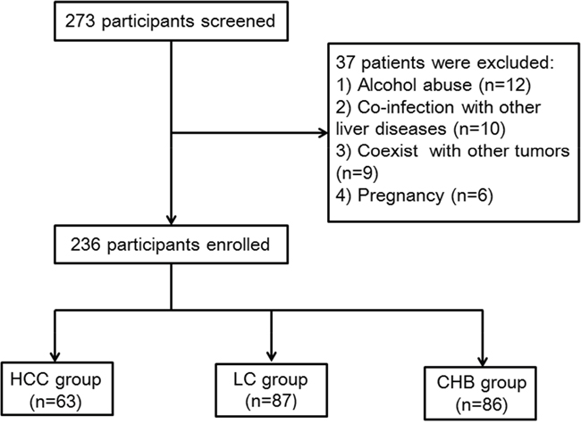 Flowchart for the selected procession of all the patients in this present study.