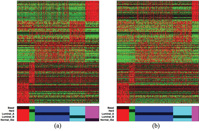 Color-map of the top 125 subtype-specific isoforms (25 from each subtype) from (a) the discovery and (b) validation sets.