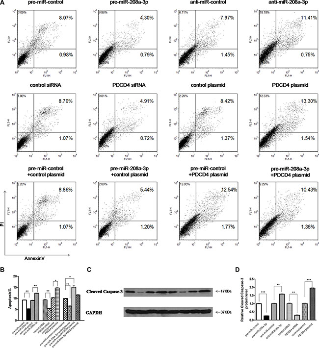 Effect of miR-208a-3p and PDCD4 on the apoptosis of gastric cancer cells.