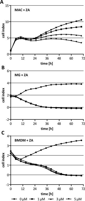 Cytotoxicity of ZA on macrophages.