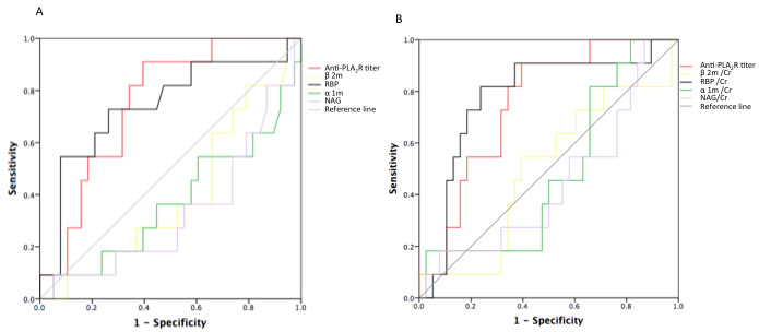 ROC curves for urinary excretion rates of LMW proteins and serum anti-PLA