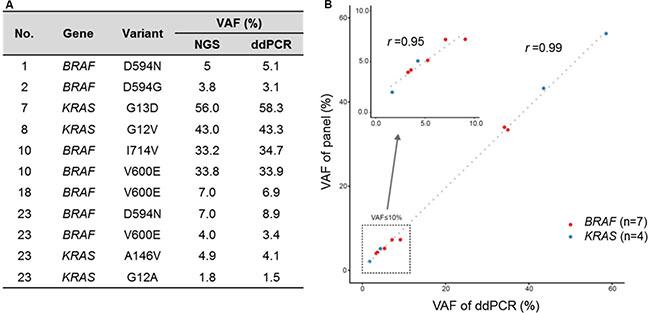 High correlation of VAF from cancer panel and digital droplet PCR.