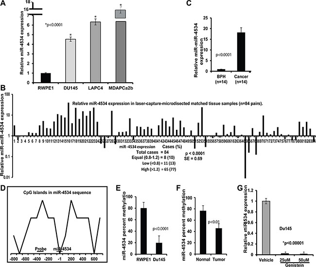 miR-4534 expression and methylation status in prostate cancer.