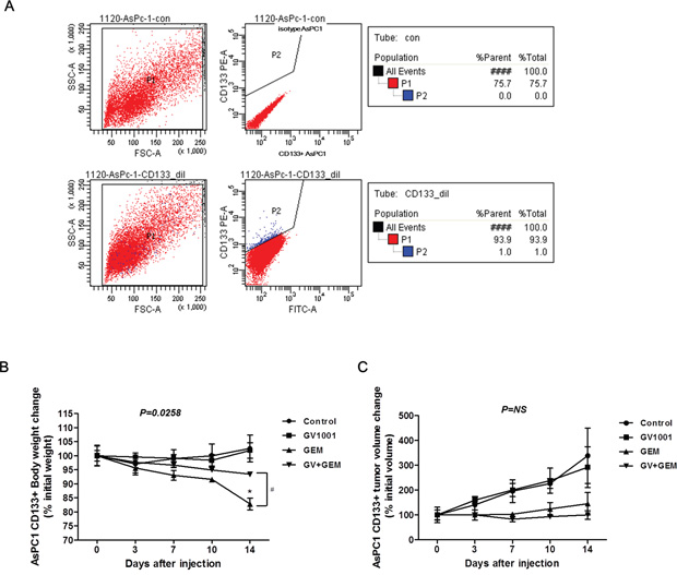 Changes in CD133+ AsPC1 xenograft mice after GV1001 and gemcitabine treatments.