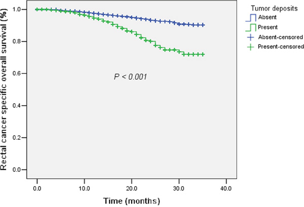 The survival curves of tumor deposits (Absent / Present) plotted by the Kaplan-Meier method in rectal cancer with preoperative radiotherapy.