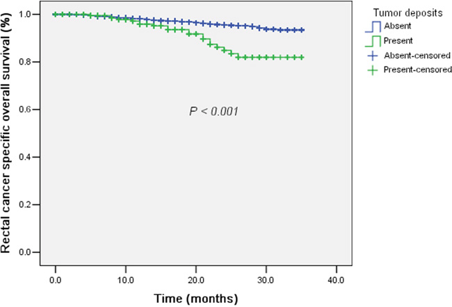 The survival curves of tumor deposits (Absent / Present) plotted by the Kaplan-Meier method in regional lymph nodes negative rectal cancer with preoperative radiotherapy.