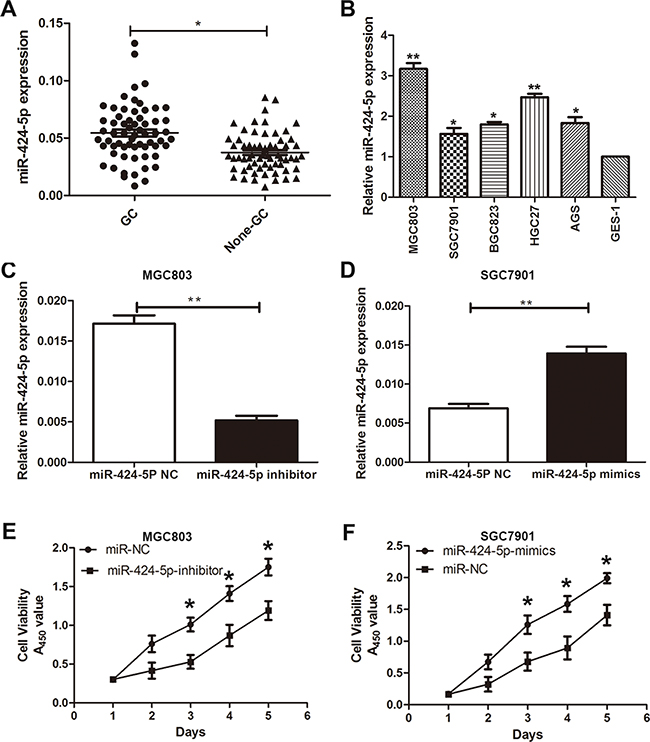 MiR-424-5p was up-regulated in GC tissues and cells.