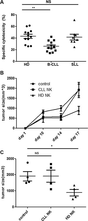 NK cells from patients with B-CLL fail to control tumor growth in vitro and in vivo.