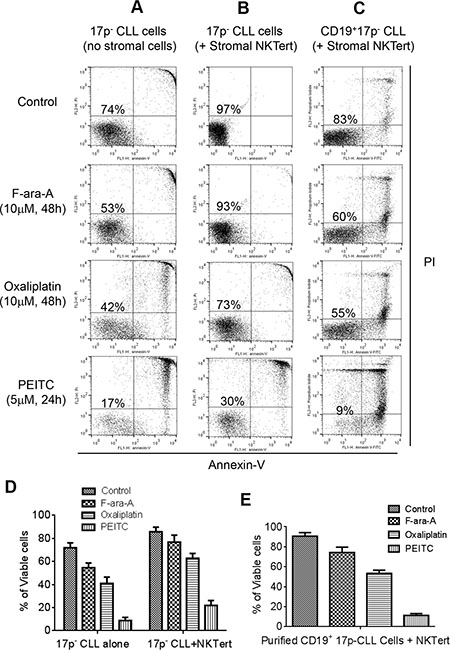 Comparison of cytotoxic effect of PEITC and standard chemotherapeutic agents in primary CLL cells with 17p deletion.