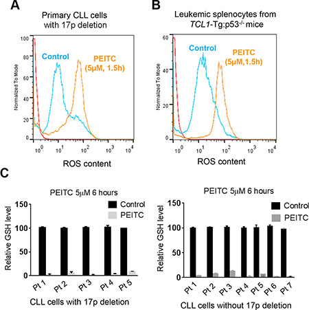 ROS accumulation and glutathione depletion induced by PEITC in p53-deficient CLL cells.
