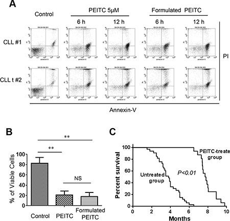 Formulated PEITC in pluronic F127 nanoparticles exhibited potent anti-CLL activity in vitro and in vivo.