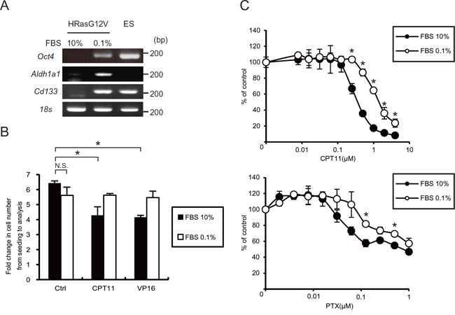 Serum depletion induced CSC gene expression and resistance to anti-cancer drugs.