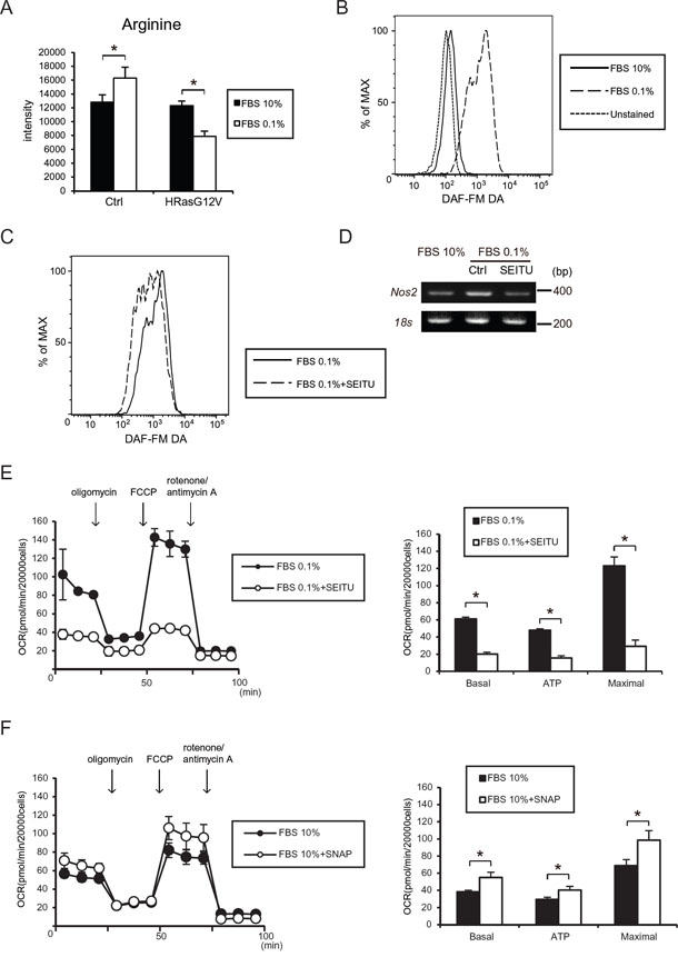 Serum depletion induced NO synthesis and iNos (Nos2) gene expression.