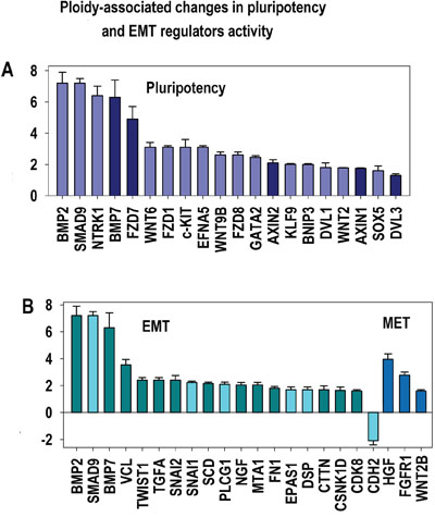 Ploidy-associated regulators of epithelial-to-mesenchymal transition (EMT) and pluripotency.